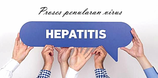 Proses Penularan Virus Hepatitis A Dari Makanan